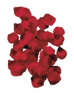 Red_rose_petals